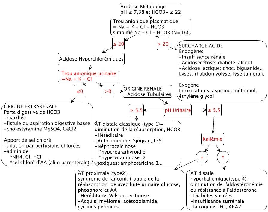 hématologie vgm alcool
